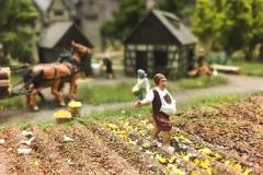 Ein Bauer bei der Saat.