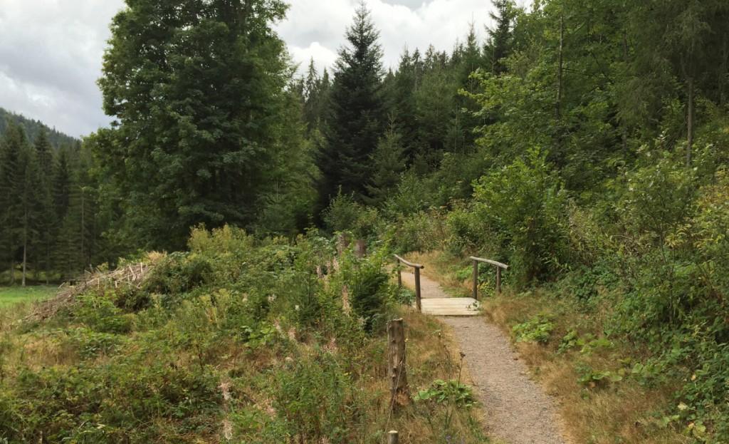 Eine kleine Brücke irgendwo im Südschwarzwald.