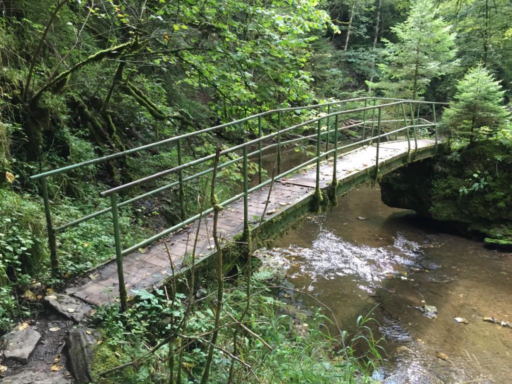 Eine Brücke, die Vertrauen weckt. Gesehen in der Wutachschlucht.