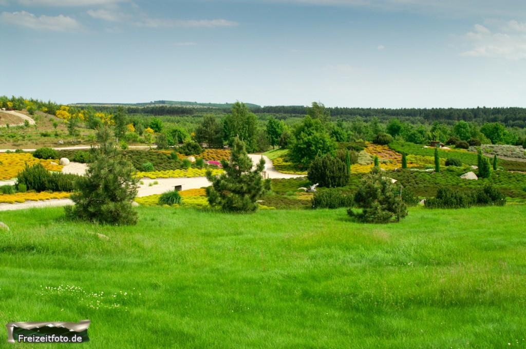 Lausitzer-Findlingspark-005