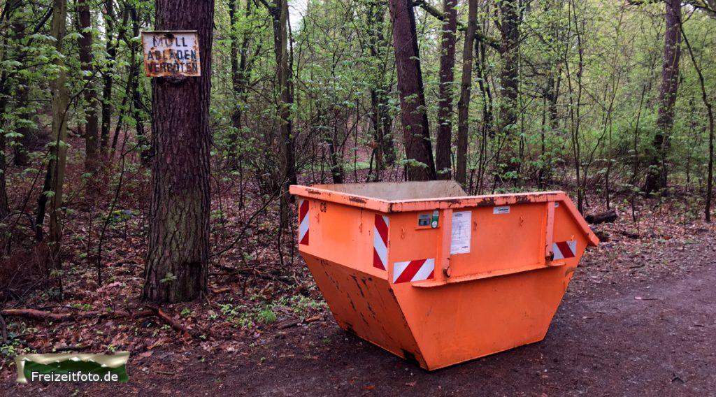 Bild: Ein leerer Container im Wald vor Beginn der Aktion.