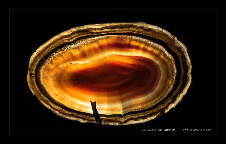 1.000.000 Jahre