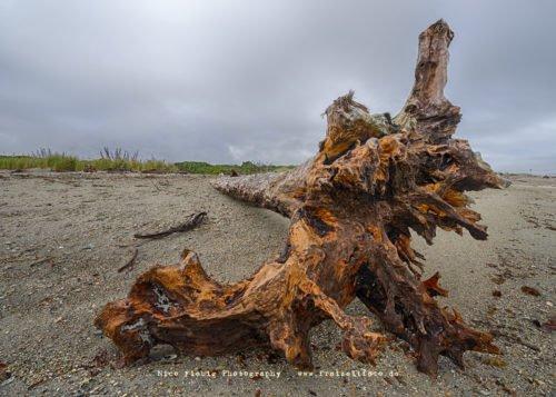 Haast Beach Neuseeland