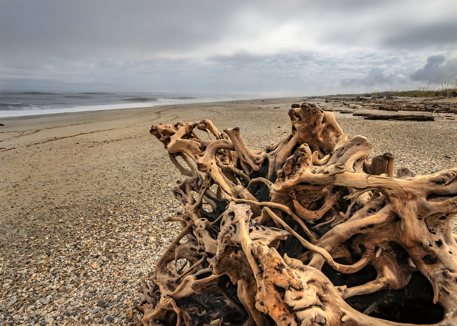 Neuseeland Haast Beach