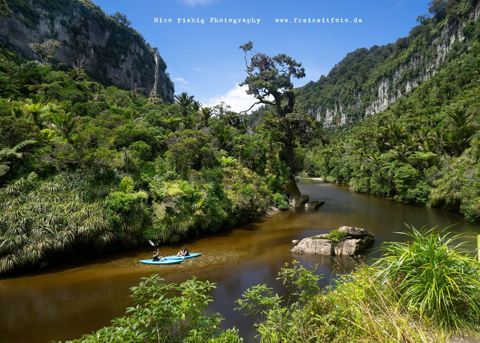 Pororari River Track Neuseeland