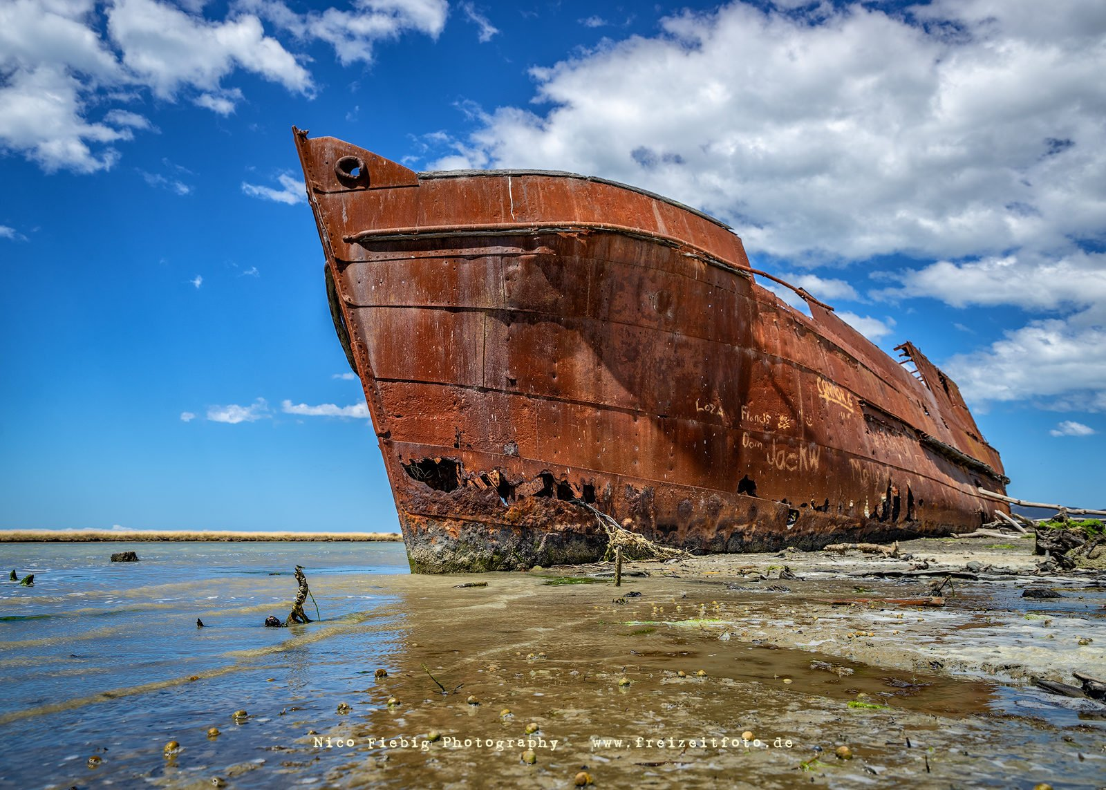 Waverley (Schiffswrack) Neuseeland